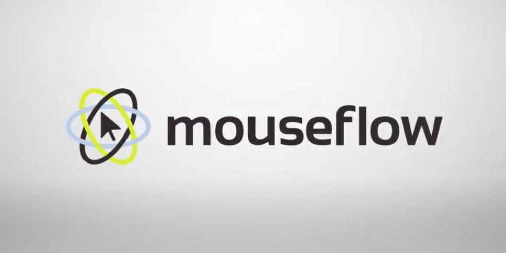 Mouseflow website Analytics